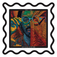 Anything In Return Toro Y Moi