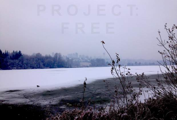Project Free - December